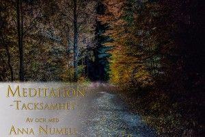 Meditation tacksamhet